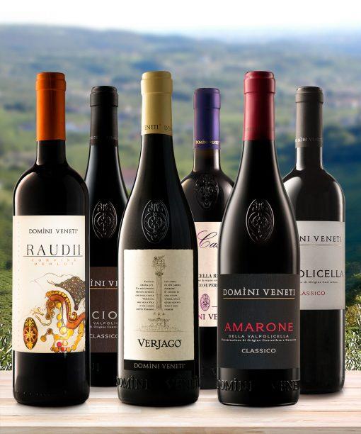 Selezioni Domìni Veneti - collezione vini veneti